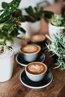 Best cafes in Doha